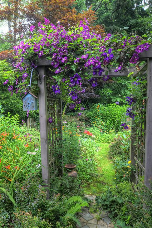 Garden Arbor Covered with Flowers