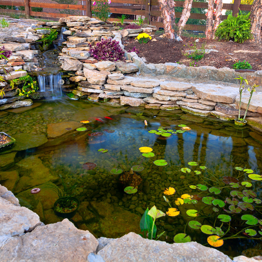 Koi Pond with Stacked Stones