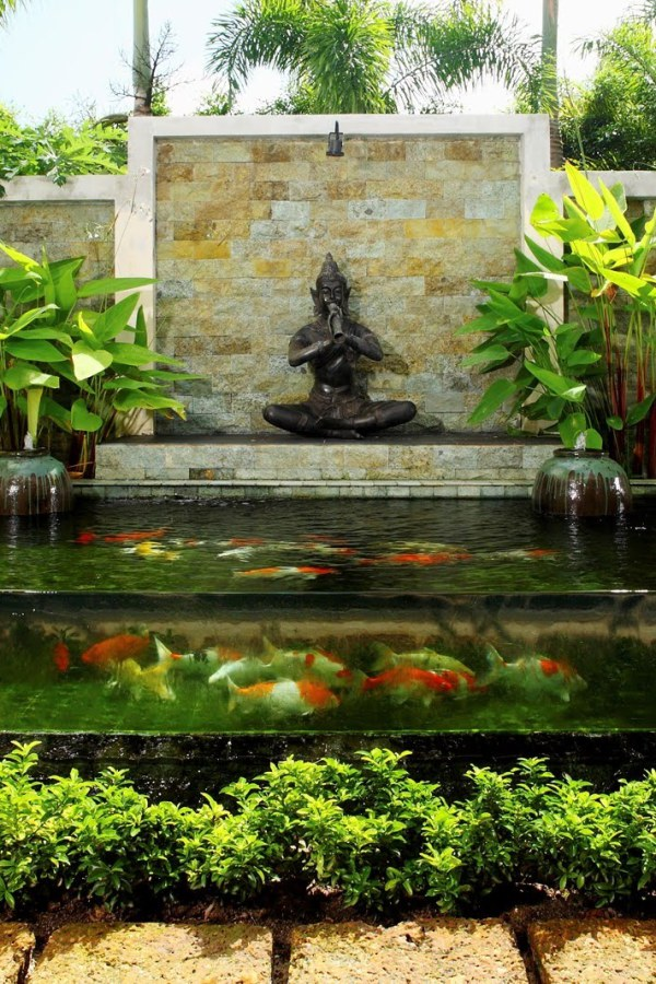 Koi pond designs landscaping gazette online for Koi pond glass
