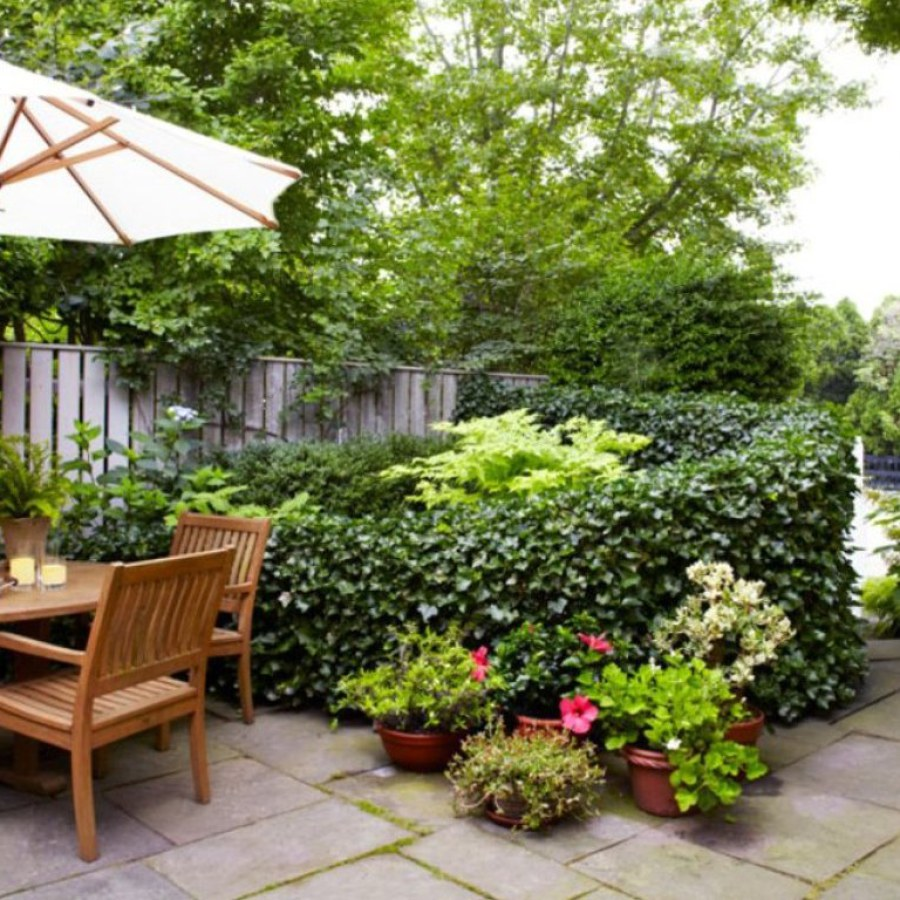 Patio Landscape Garden