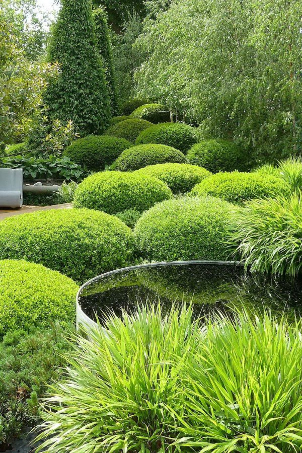 Simple Green Garden Landscape