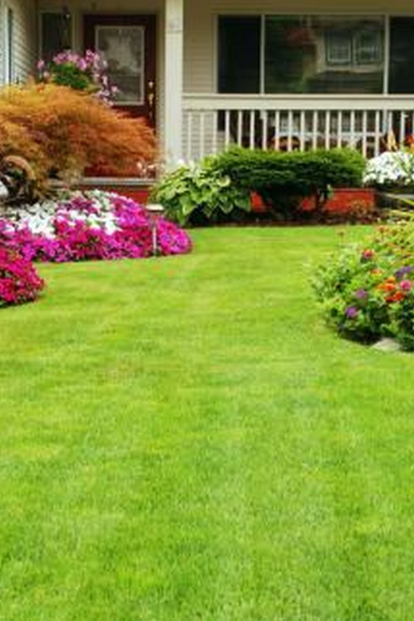 Backyard Landscape with Flowers and Lawn