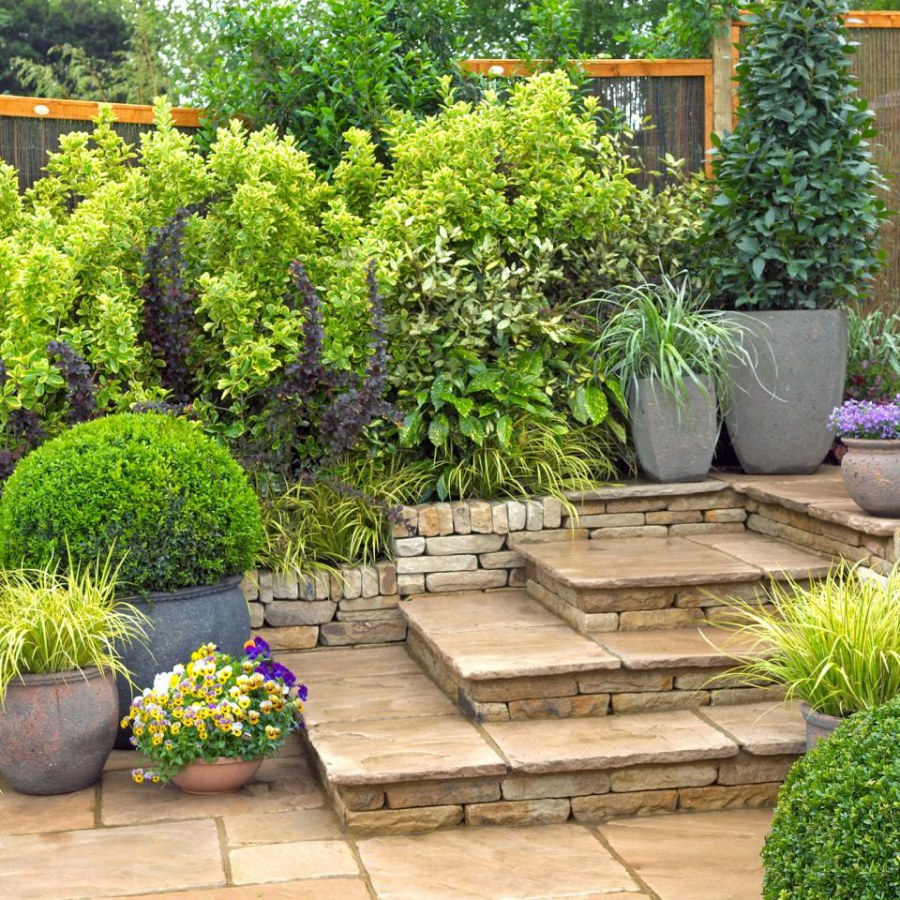 Home Landscape with Garden Containers