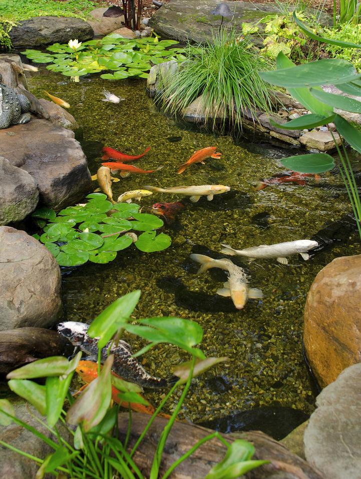 Freshideen Com Coole Wasser Garten Ideen Wasser In Der Sch13a2775be13269e092d7a4e693a42bc7