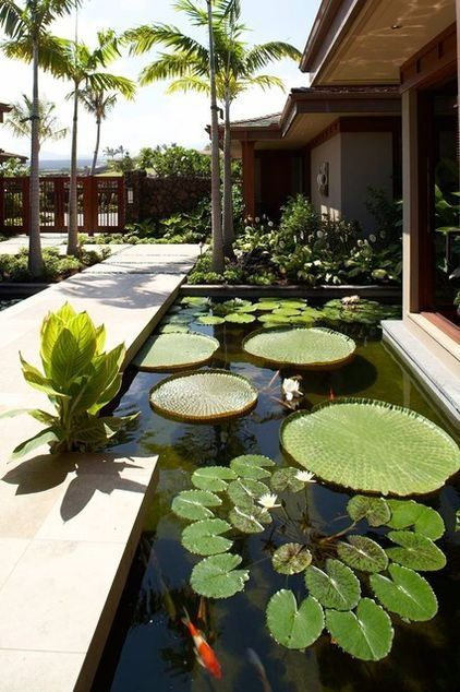 Onekindesign Com 55 Visually Striking Pond Design Ideas For Yo4a1cbe1bba7968069c4deae8f766ffe5