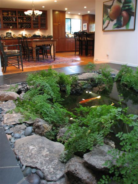 Pfluegerestates Com We Will Have An Indoor Koi Pond In The New Ho1e55186d655e00498e179bd9db3c47e8
